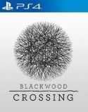 Blackwood Crossing (PC, PS4, Xbox One)