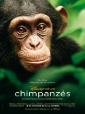 Chimpanzés, la critique du film
