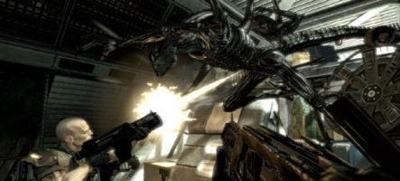 Du DLC pour Aliens Vs Predator peu après sa sortie