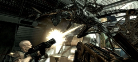GamesCom : Aliens vs Predator