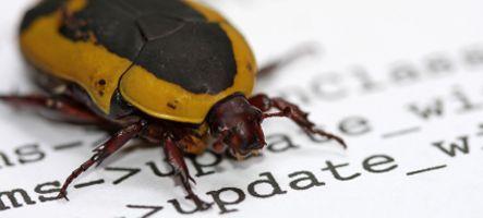 Les 5 plus gros bugs du jeu vidéo pour l'année 2011