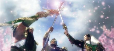 (Test) Dynasty Warriors Next (PS Vita)