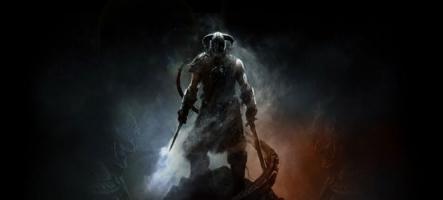The Elder Scrolls V Skyrim : Un chou + un seau = une vidéo hallucinante