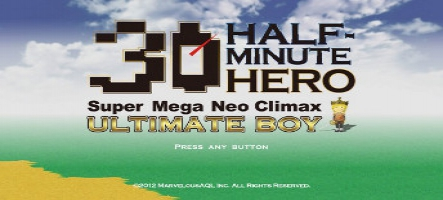 (Test) Half Minute Hero (PC, Xbox 360)