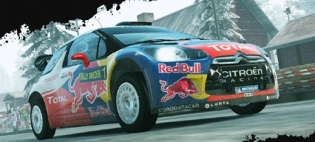 (Test) WRC 3 (PC, Xbox 360, PS3, PS Vita)