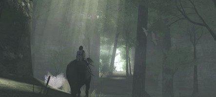 Le film Shadow of the Colossus patauge toujours