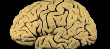 Jouer à un jeu vidéo tous les jours améliore vos performances cognitives