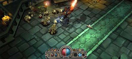 Un mod plus que généreux pour Torchlight II