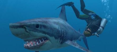 (E3) Endless Ocean 2 annoncé et dévoilé en vidéo