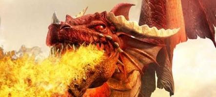 [MAJ] Dungeons and Dragons Online devient gratuit