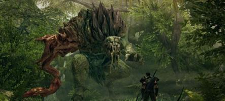 Bound by Flame, un jeu épique sur PS4 et Xbox One
