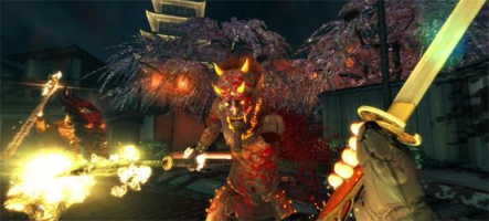 Shadow Warrior est disponible sur PC