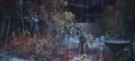 (Test) Rain (PSN)