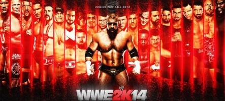 WWE 2K14 rajoute une couche de mecs à moitié à poils sur un ring