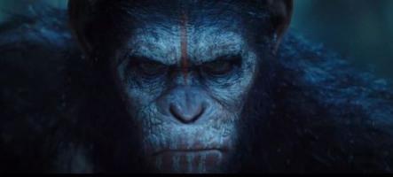 La Planète des Singes : l'Affrontement s'offre une première bande-annonce