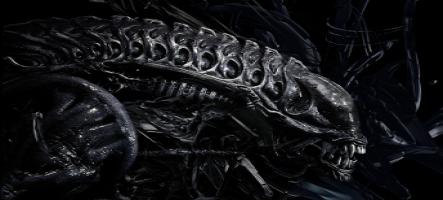 Un nouveau jeu Alien annoncé