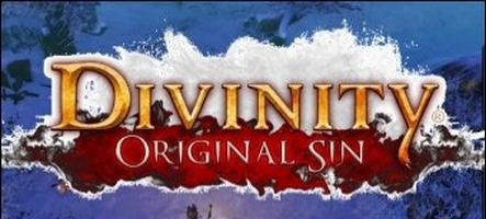 Divinity: Original Sin dispo sur Steam en accès anticipé