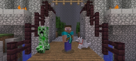 Minecraft sur PS3 atteint le million