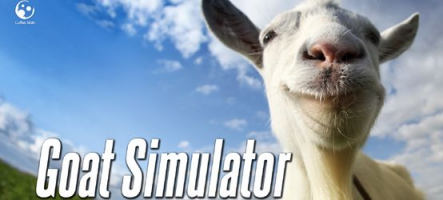 Un simulateur de chèvre...