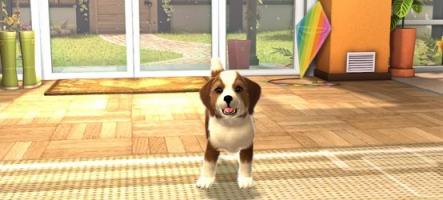 PlayStation Vita Pets pour début juin