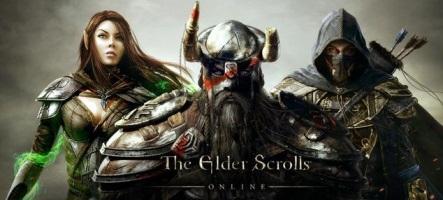 The Elder Scrolls Online : Bethesda bannit des dizaines de comptes par erreur