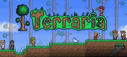 Terraria annoncé sur PS4 et Xbox One