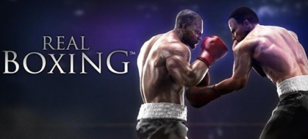 Real Boxing disponible sur PC