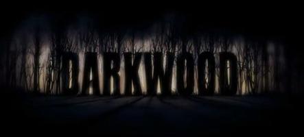 Darkwood, un trailer pour un accès anticipé