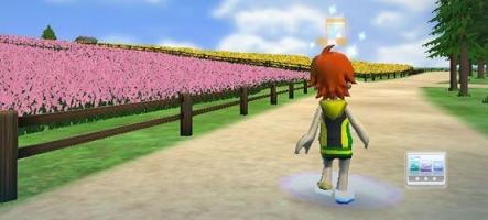 Un jeu de marche sur Wii...