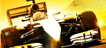 (Test) F1 2014 (PC, PS3, Xbox 36...