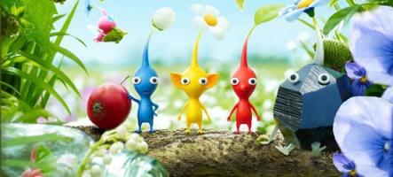 Pikmin : une mini-série payante disponible sur 3DS et Wii U