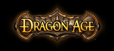 Un coffret collector pour Dragon Age : Origins