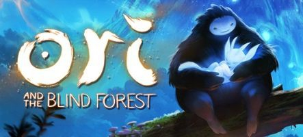 (Test) Ori and the Blind Forest (Xbox One, PC)