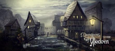 Dungeons of Aledorn, un jeu de rôle à l'ancienne