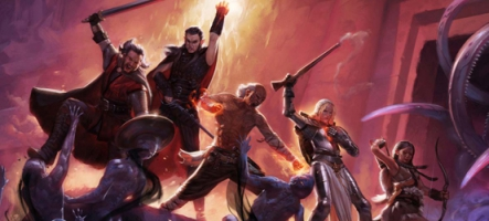 Pillars of Eternity : le gros bug qui fait tache