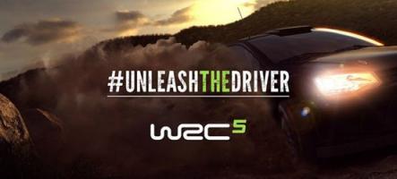 WRC 5 : Découvrez les premières images de gameplay du jeu