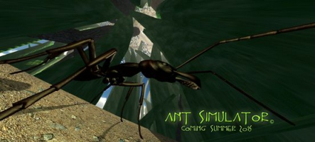 Ant Simulator : Jouez... une fourmi !