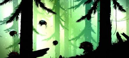 Feist : Dans la sombre forêt...