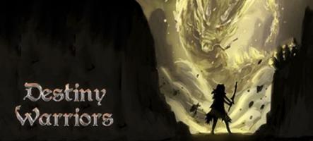 Destiny Warriors RPG : un jeu de rôle à l'ancienne