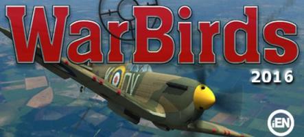 Warbirds 2016 : Pilotez un avion de chasse de la Seconde Guerre