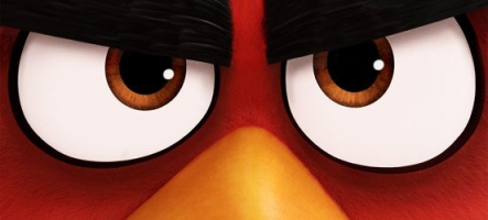 Angry Birds : Le film ! La bande-annonce !