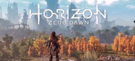 Horizon Zero Dawn part à la chasse au mécha