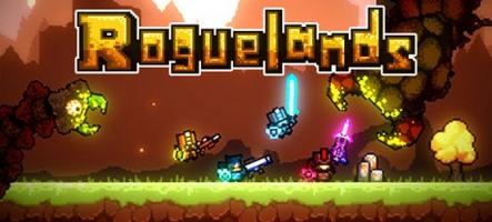 Roguelands : Un jeu de rôle multijoueur