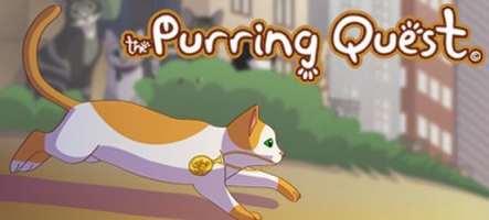 The Puring Quest : Jouez un chat