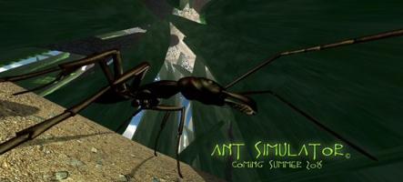 Ant Simulator annulé : l'argent utilisé pour de l'alcool et des putes