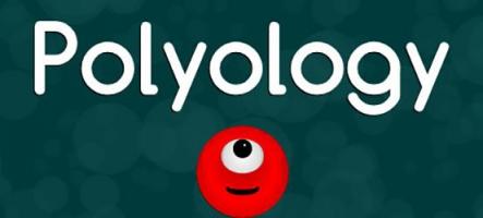 Polyology : Casse-tête à blocs