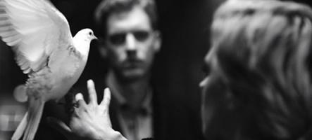 Le son de la semaine : Warhaus ''The Good Lie''