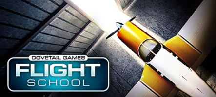 Dovetail Games Flight School : Apprenez à piloter un avion