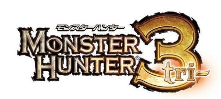 Banni de Monster Hunter 3 jusqu'en 9999
