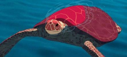La chronique cinéma de Paf ! : La tortue rouge